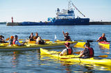 Kayak Tour in Tallinn